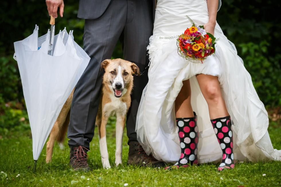 Hochzeit im Regen: Silke und Witold