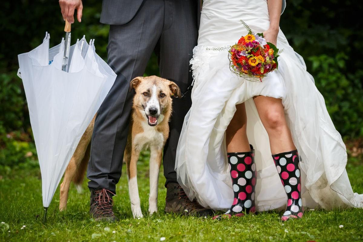 Hochzeit im Regen: Silke und Witold - ROCKSTEIN fotografie