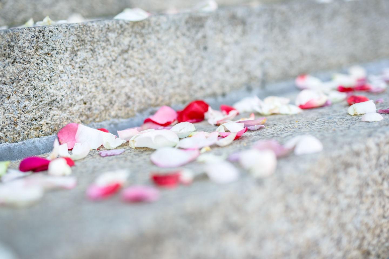 als Hochzeitsfotograf ist es und wichtig auch Details einer Hochzeit bildlich festzuhalten, wie hier die Blüten auf den Treppenstufen des Standesamts in Mülheim