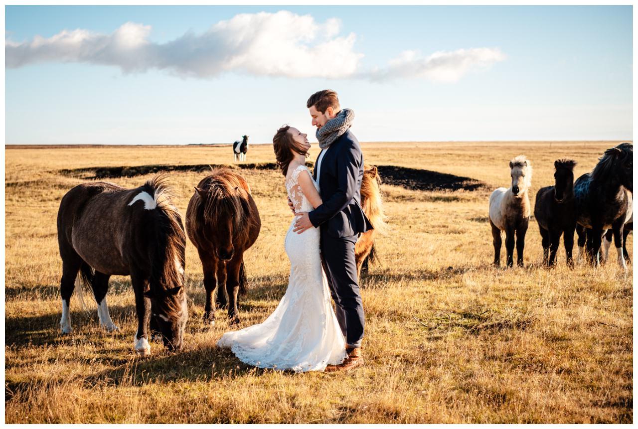 After Wedding Shooting Island Hochzeitsfotos Fotograf 27 - After Wedding Shooting auf Island