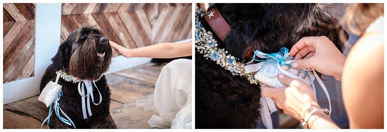 Hochzeit Tulum Noordwijk Heiraten Strand Holland Hochzeitsfotograf 27 - Hochzeit in Holland am Strand