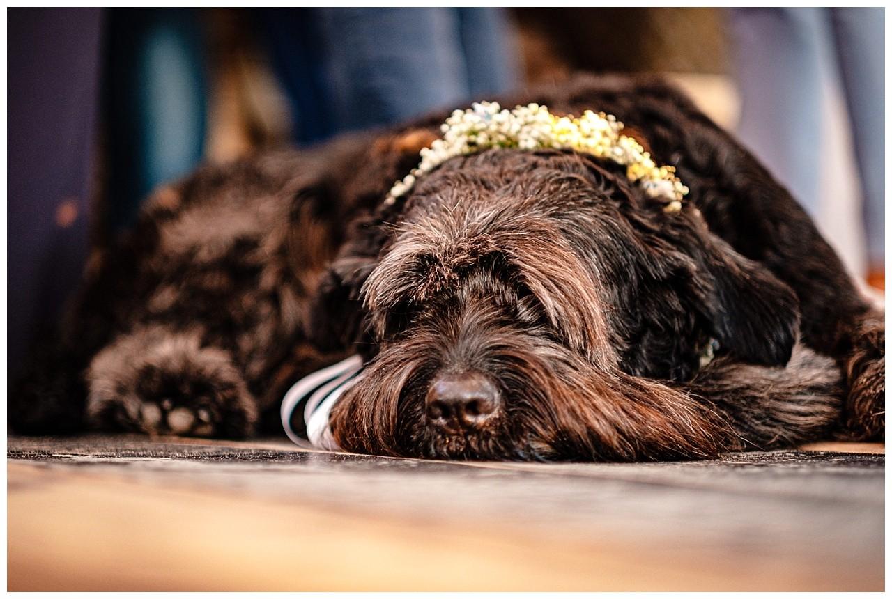 Hochzeit Tulum Noordwijk Heiraten Strand Holland Hochzeitsfotograf 65 - Hochzeit in Holland am Strand