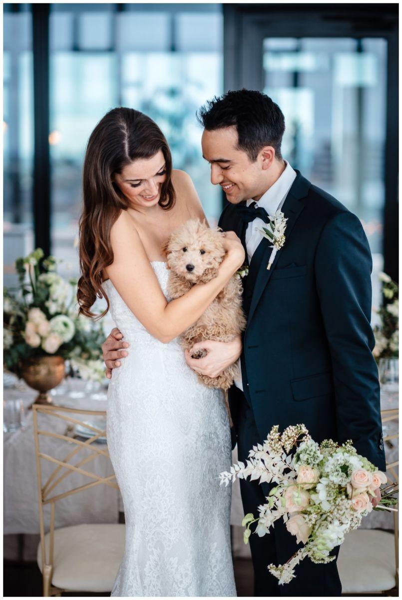 hochzeitsfotos düsseldorf hochzeitsfotograf shooting hund haustier 30 - Hochzeitsfotos in Düsseldorf