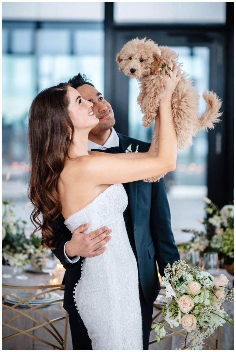 hochzeitsfotos düsseldorf hochzeitsfotograf shooting hund haustier 31 - Hochzeitsfotos in Düsseldorf